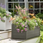 two box planters filled with multi-colored flowers